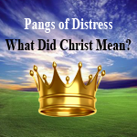 Post image for Pangs of Distress: What Did Christ Mean?